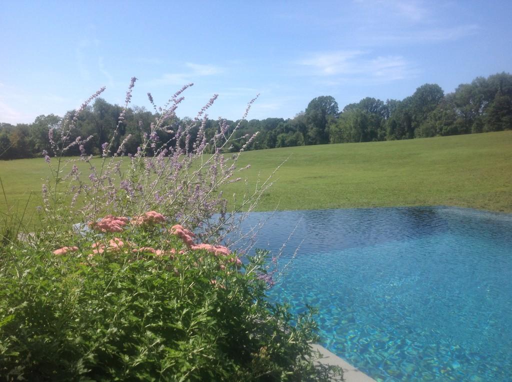 Pool meadow