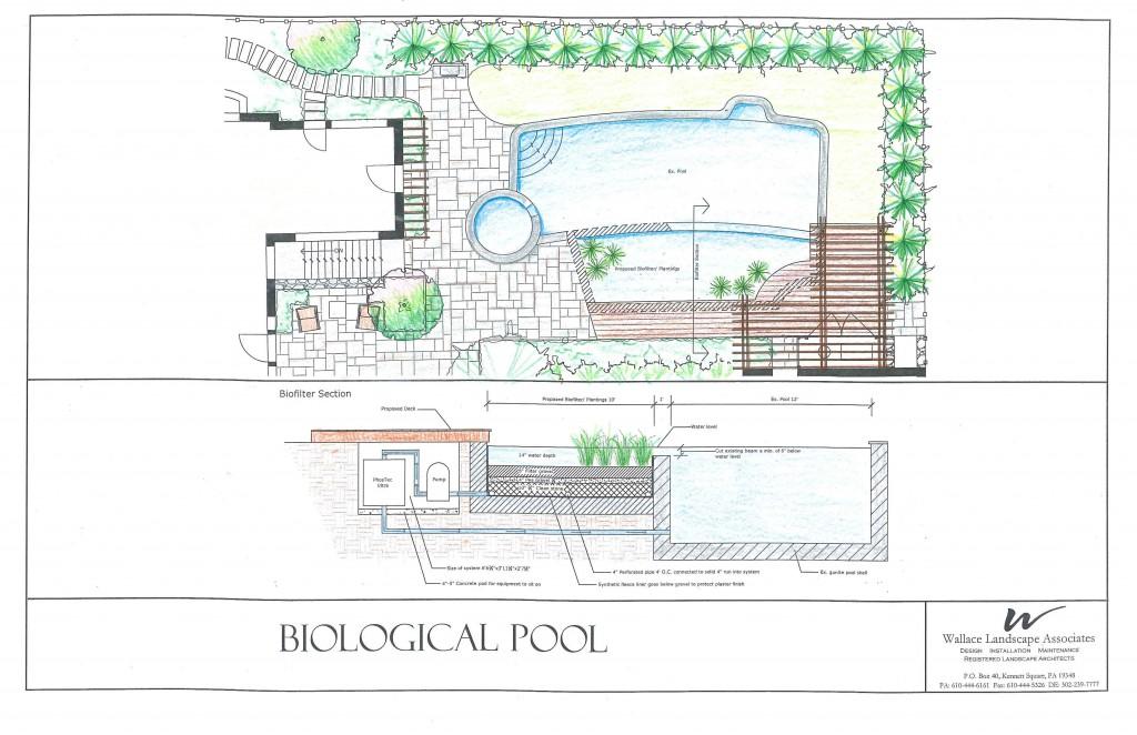Biological-pool-color-11.12.12