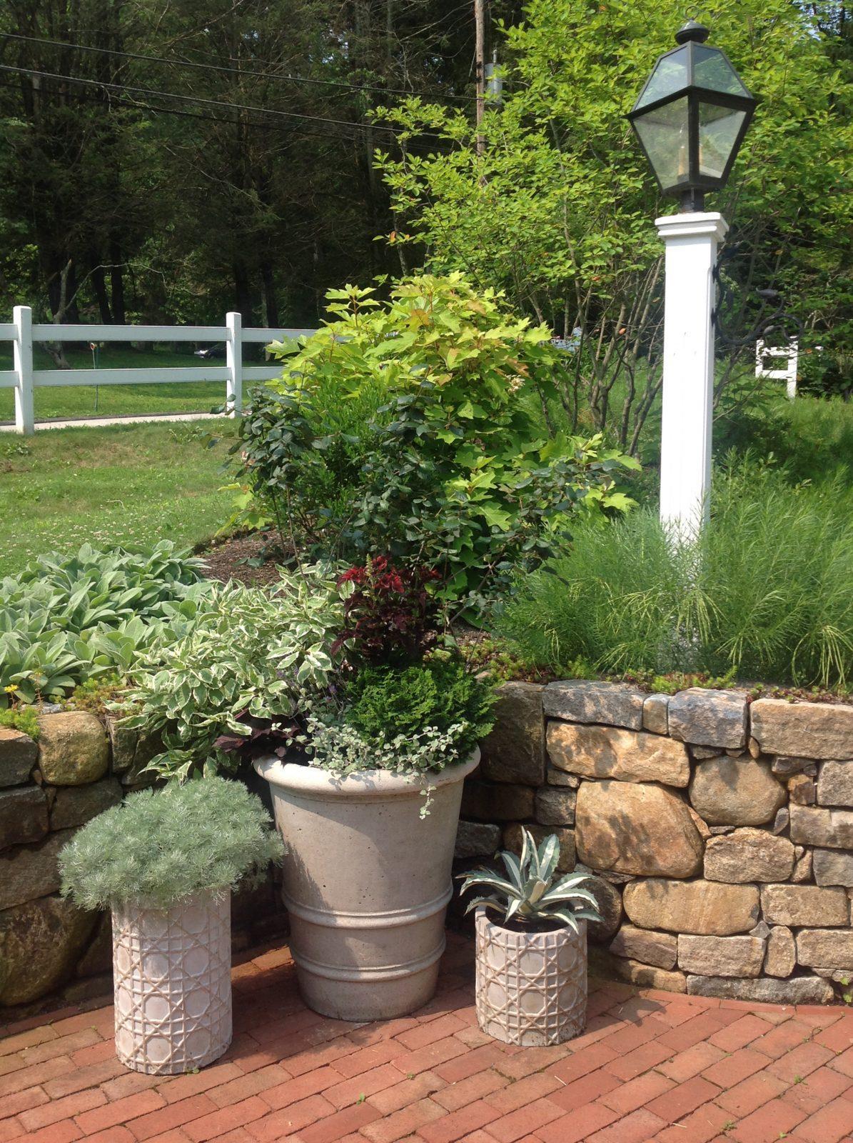 lovely-container-garden-gardening