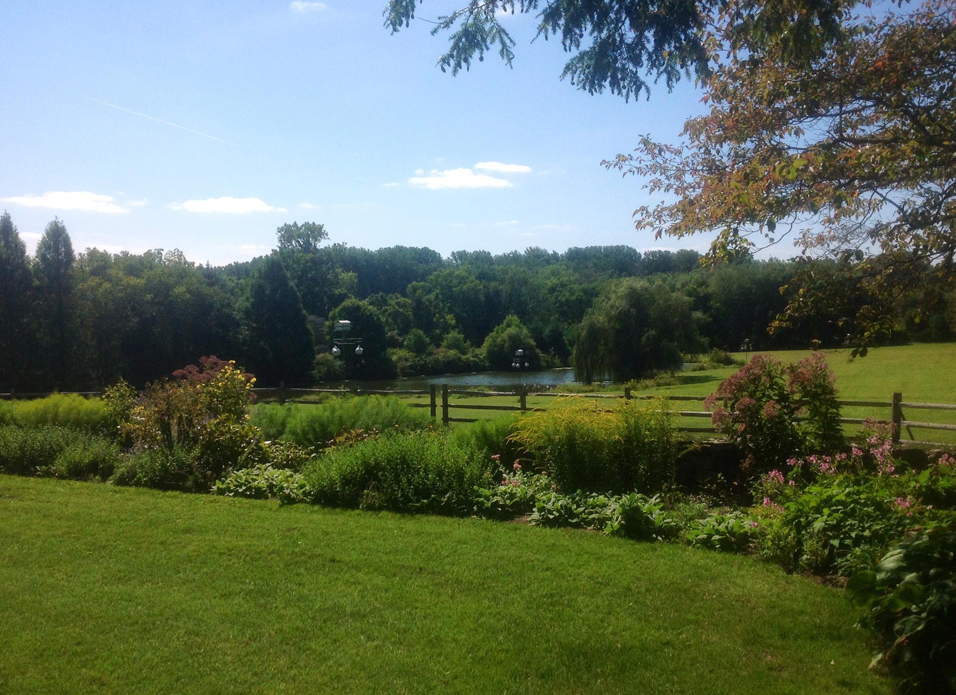 horse-farm-perennial-border-garden-design-greenville-de