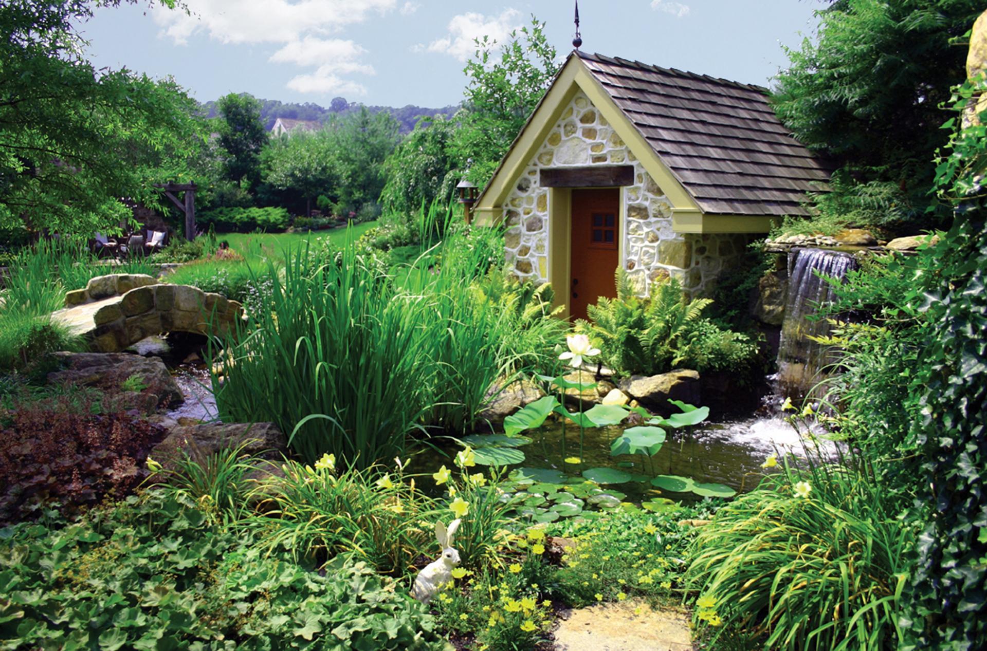 pond-design-plants-water-garden-planting-landscape-design-details