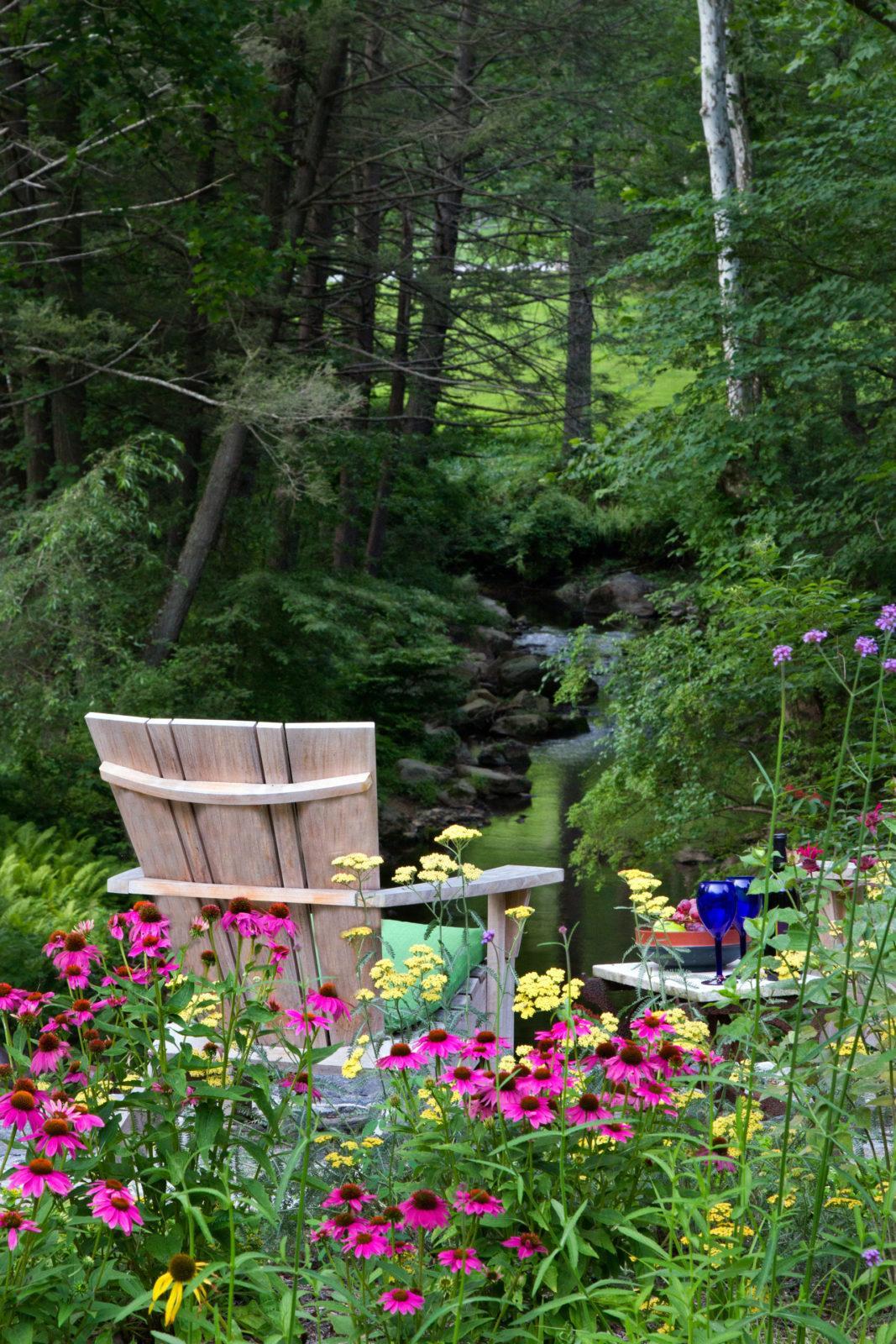 meadow-garden-native-plants-pollinator-garden-main-line-pa